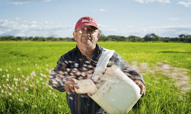 Produtor Rural poderá emitir NFe com CPF a partir de Outubro